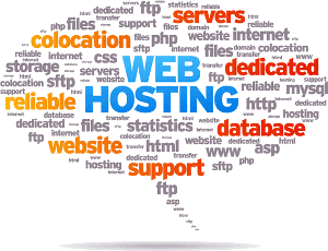 web hosting at BIP media