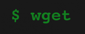 wget Linux Command for BIPmedia VPS