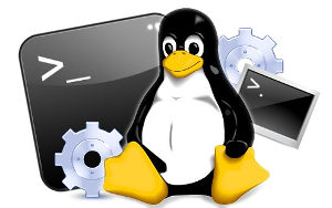 Linux Commands for your VPS Cloud Server