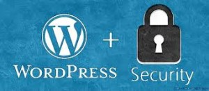 secure wordpress on a BIP media VPS