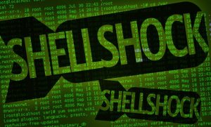 bash shellshock